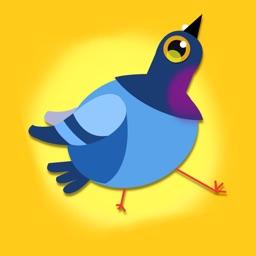 Pigeon Hop