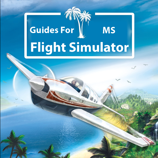 Guides For MS Flight Simulator