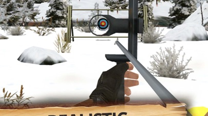 Archery Master 3D Cup Screenshot on iOS