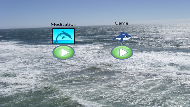 Meditation - Dolphins and Whales featuring Classical Music