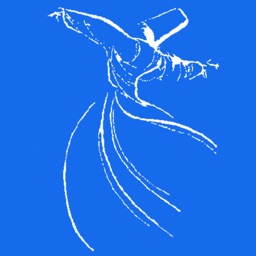 Rumi 2014