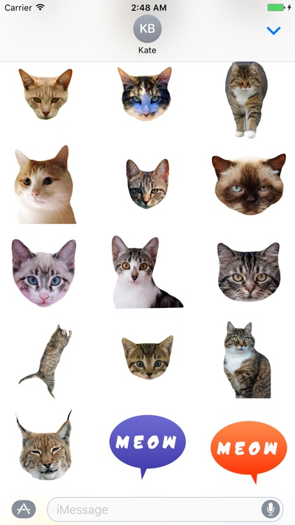 Cat Stickers for iMessage : Cats & Cat Heads screenshot-3
