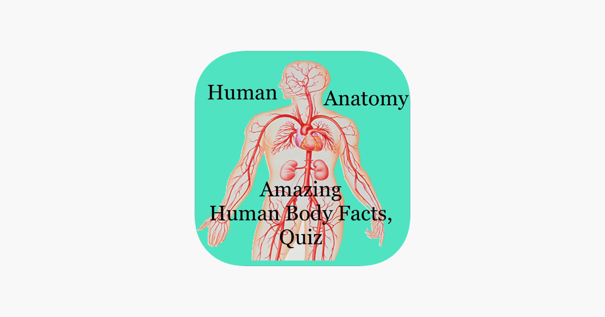 Amazing Human Body Facts Quiz On The App Store