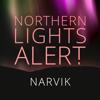 Northern Lights Alert Narvik Icon