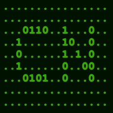 Activities of CyberNet