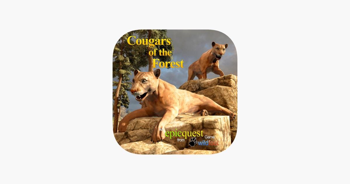 site gratuit rencontre cougars forest