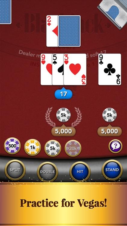 Blackjack: Casino Card Game screenshot-8