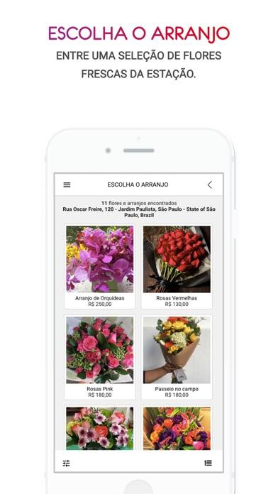 Pollen Flores Online 2