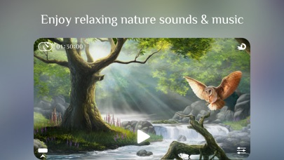 Flowing ~ Meditation in Natureのスクリーンショット