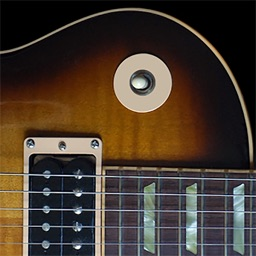 Play Blues Guitar - Learn How To Play Blues Guitar With Videos
