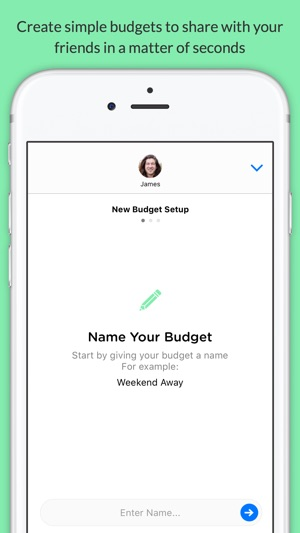 pennies mini share budgets with your friends on the app store
