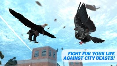 Tauben Vogel Überleben Simulator 3DScreenshot von 3