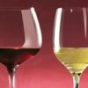 Vini Italiani - Piemonte