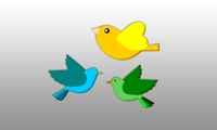 Screenwitter