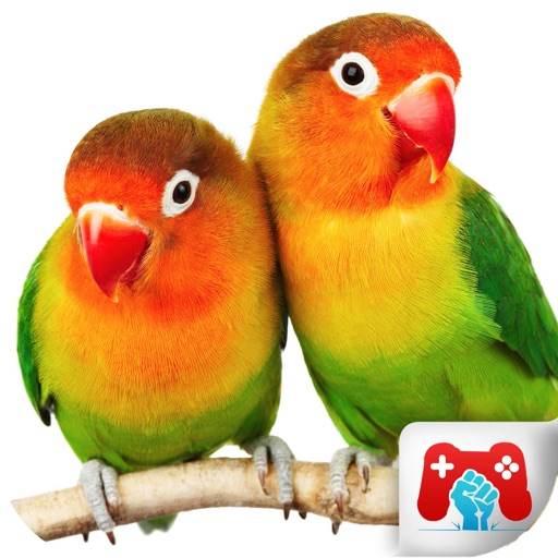 Educational Game Real Birds icon