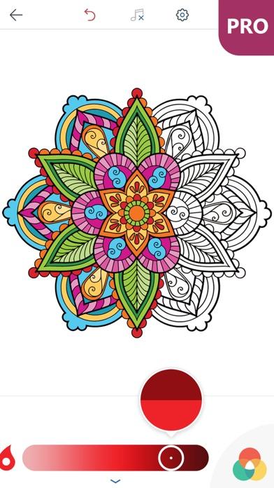マンダラ塗り絵 無料 PRO : おとなのぬりえ 本 - 曼荼羅 塗り絵 塗り絵アプリのおすすめ画像3