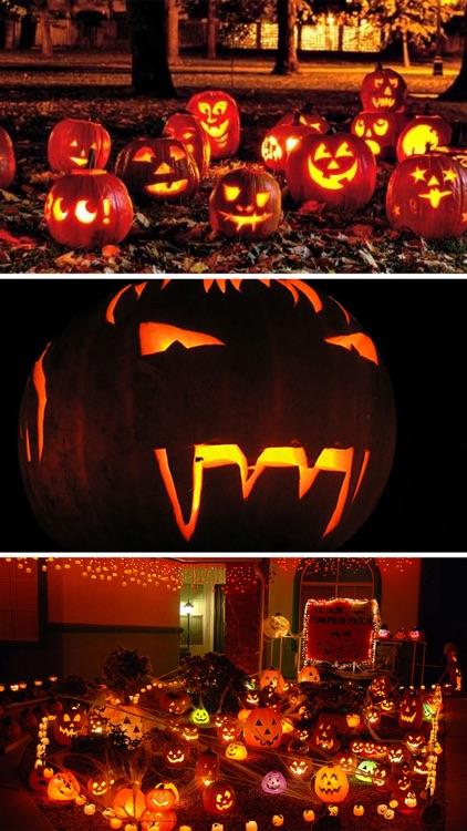 Halloween Decorations Ideas & Wallpapers Catalog screenshot-4