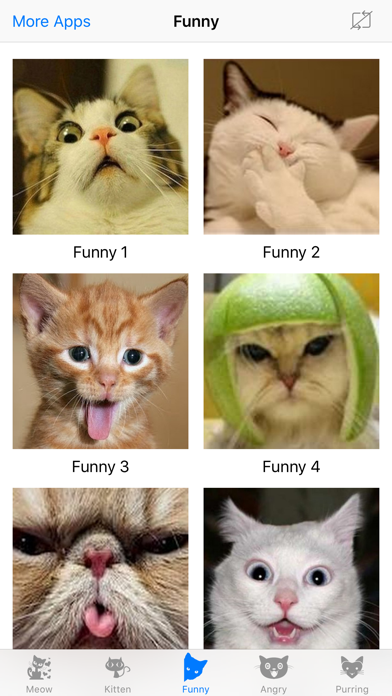 Cat Meow : Prank and troll your pets