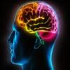 史上最强大脑脑力达人专业测试急转弯