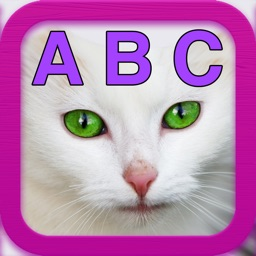 ABC Kittens - Learn ABC's with help from Kitties!