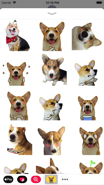 Puppy Face Animated Stickers