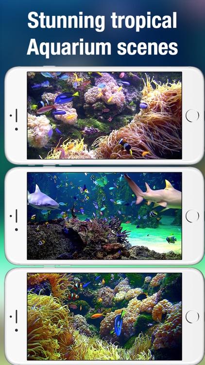 Aquarium Live: Nature & coral reef ocean scenes