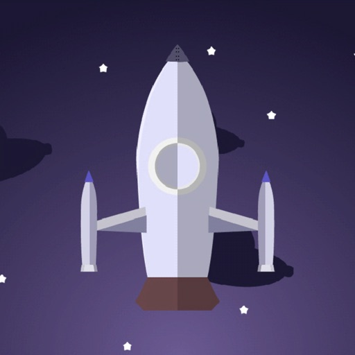 Space Surfer - Perfect Landing