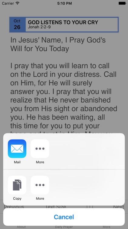 Pray God's Will - In 365 Days screenshot-4