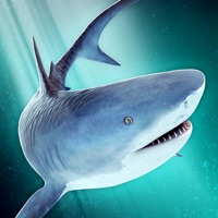 Codes for World of Sharks | Fun Deep Sea Shark Simulator Game For Free Hack