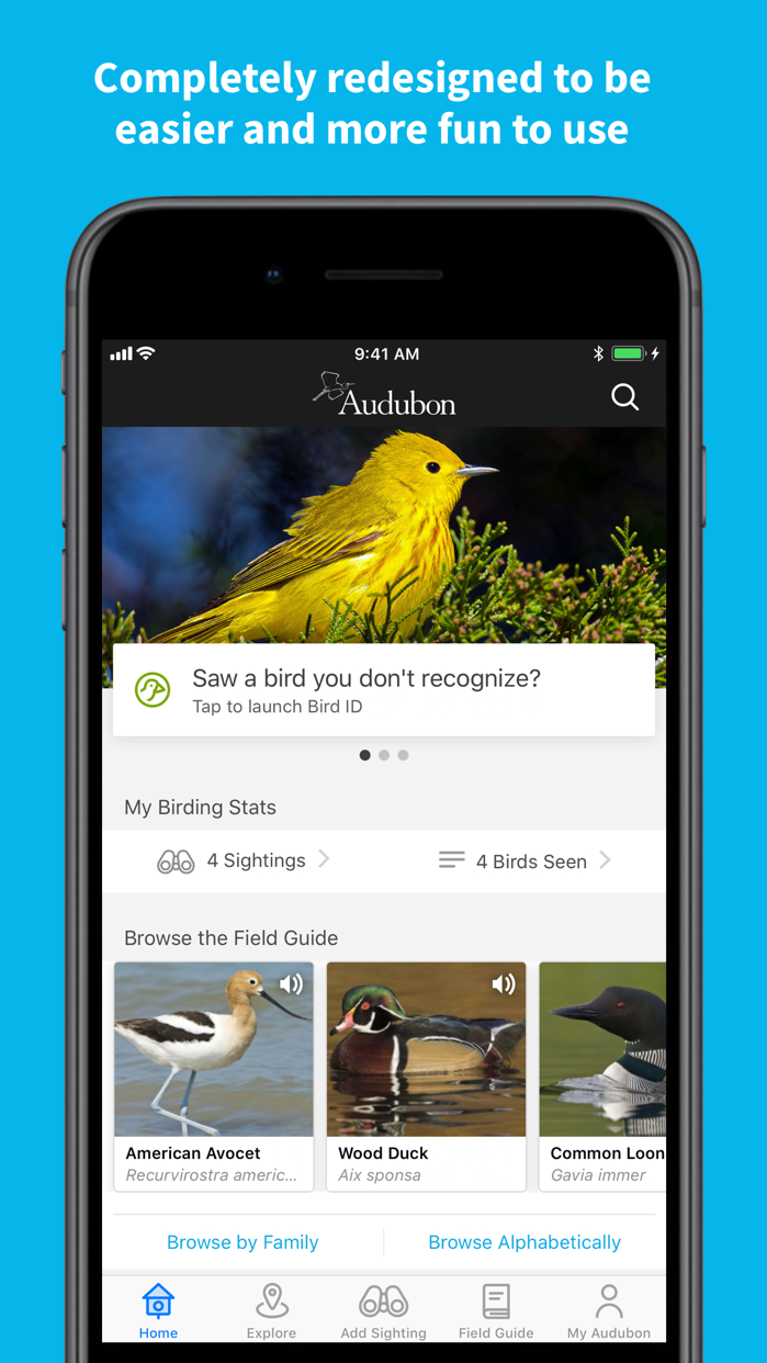 Audubon Bird Guide Screenshot