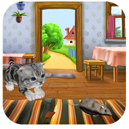 Tom Cat Jerry Rat Runner 2016 : Free Best Kitten Fun Games For Kids