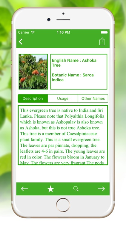 Natural Ayurvedic Remedies Herb screenshot-2