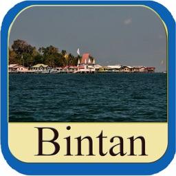 Bintan Island Offline Map Travel Guide