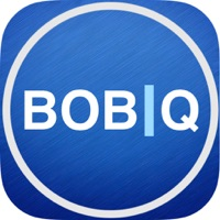 Codes for BOB Questions Hack