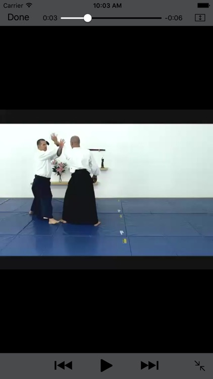 iBudokan - Aikido Exam screenshot-2