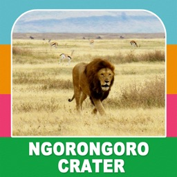 Ngorongoro Crater Tourism Guide