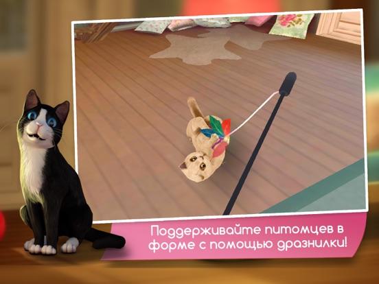 Игра CatHotel - Заботьтесь о милых