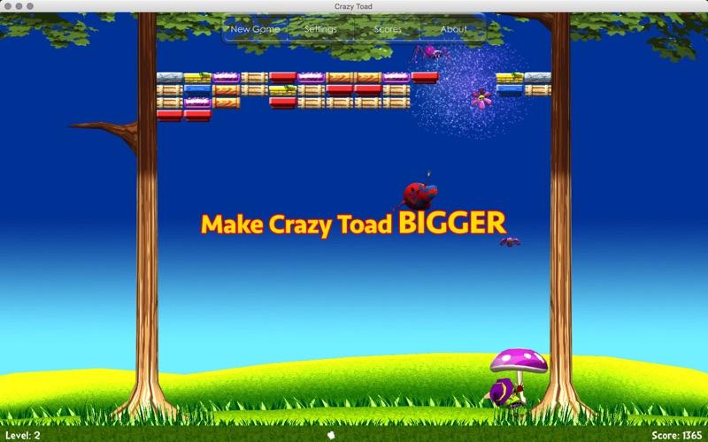 Crazy Toad Screenshot - 5