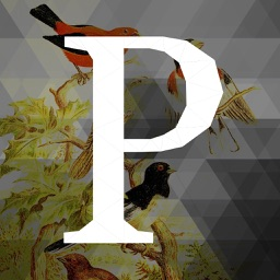 Perch Project