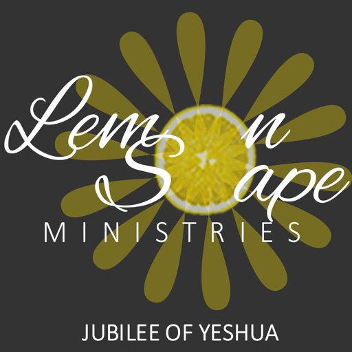 Lemonsoape Ministries