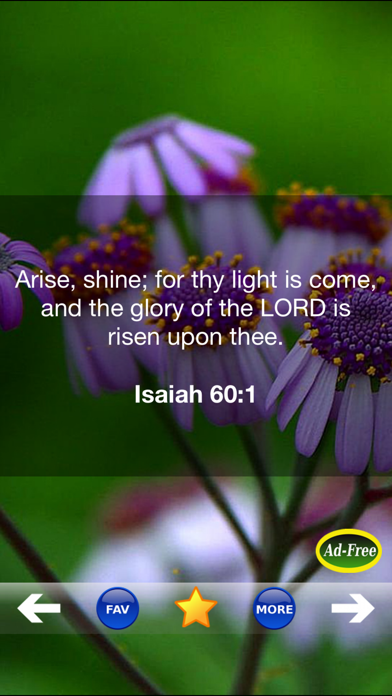 Inspirational Bible Verse of the Day FREE! Daily Bible Inspirations, Scripture & Christian Devotionals! screenshot two
