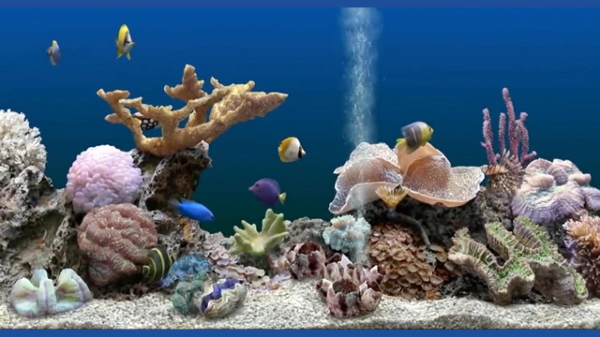 Aquarium Fish Tank HD screenshot 2