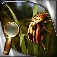 Codes for Treasure Island - The Golden Bug - Extended Edition - A Hidden Object Adventure Hack