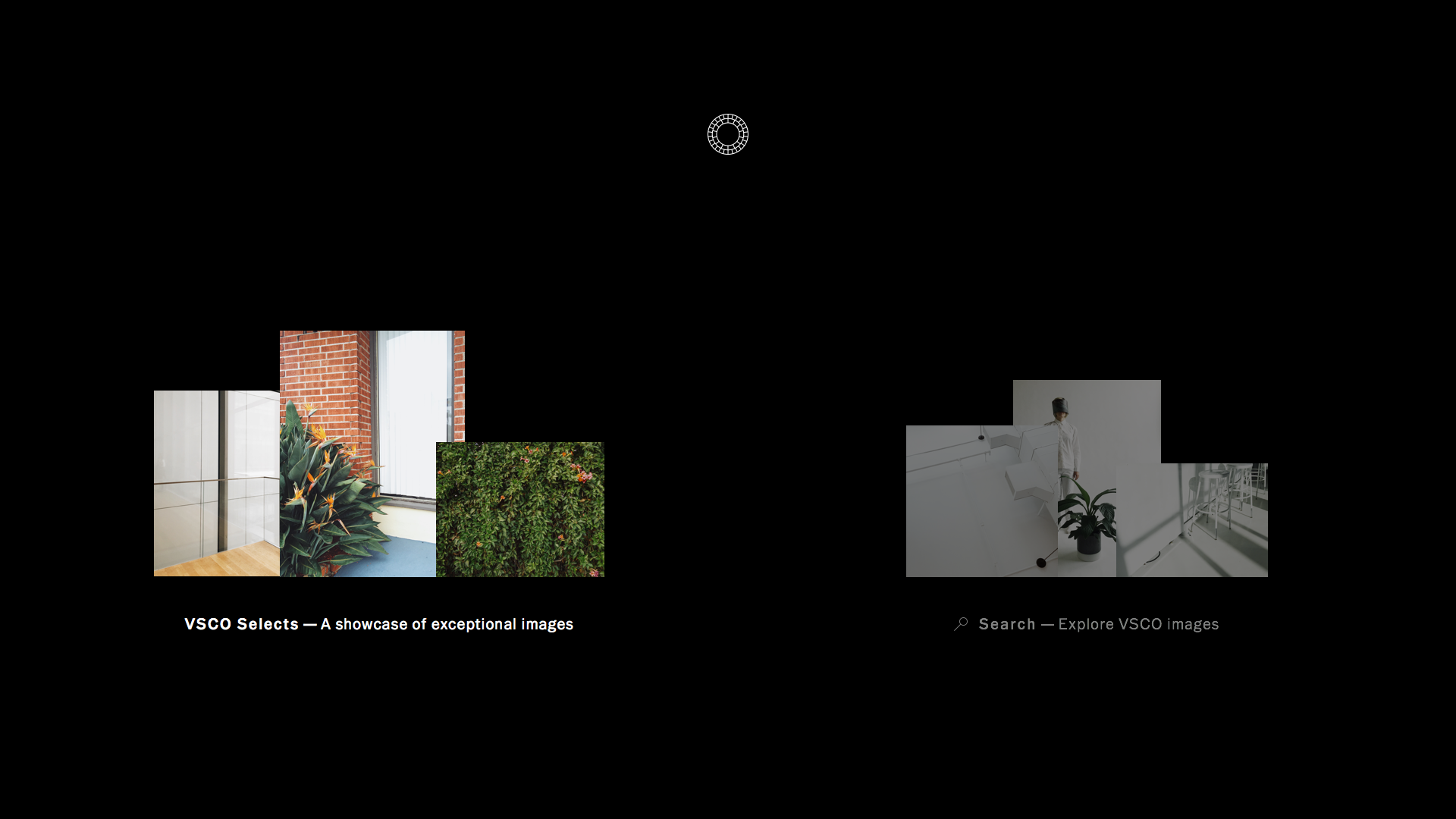 VSCO: Photo & Video Editor screenshot 11