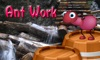 Ant Work TV