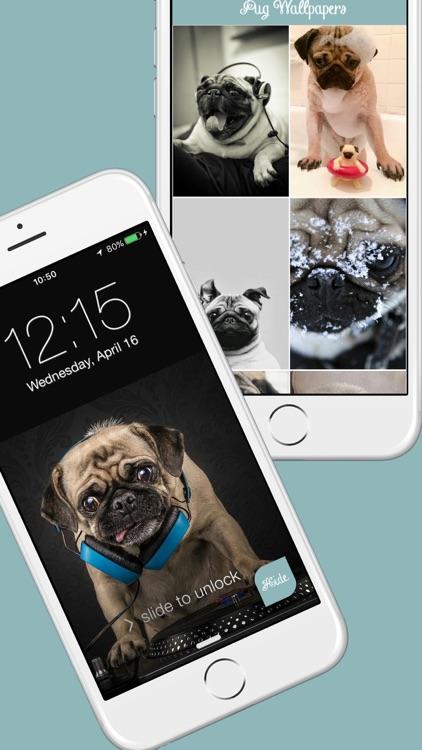 Pug Life HD - PawPapers screenshot-3