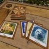 た動物の記憶ゲーム - Animals Memo - iPadアプリ