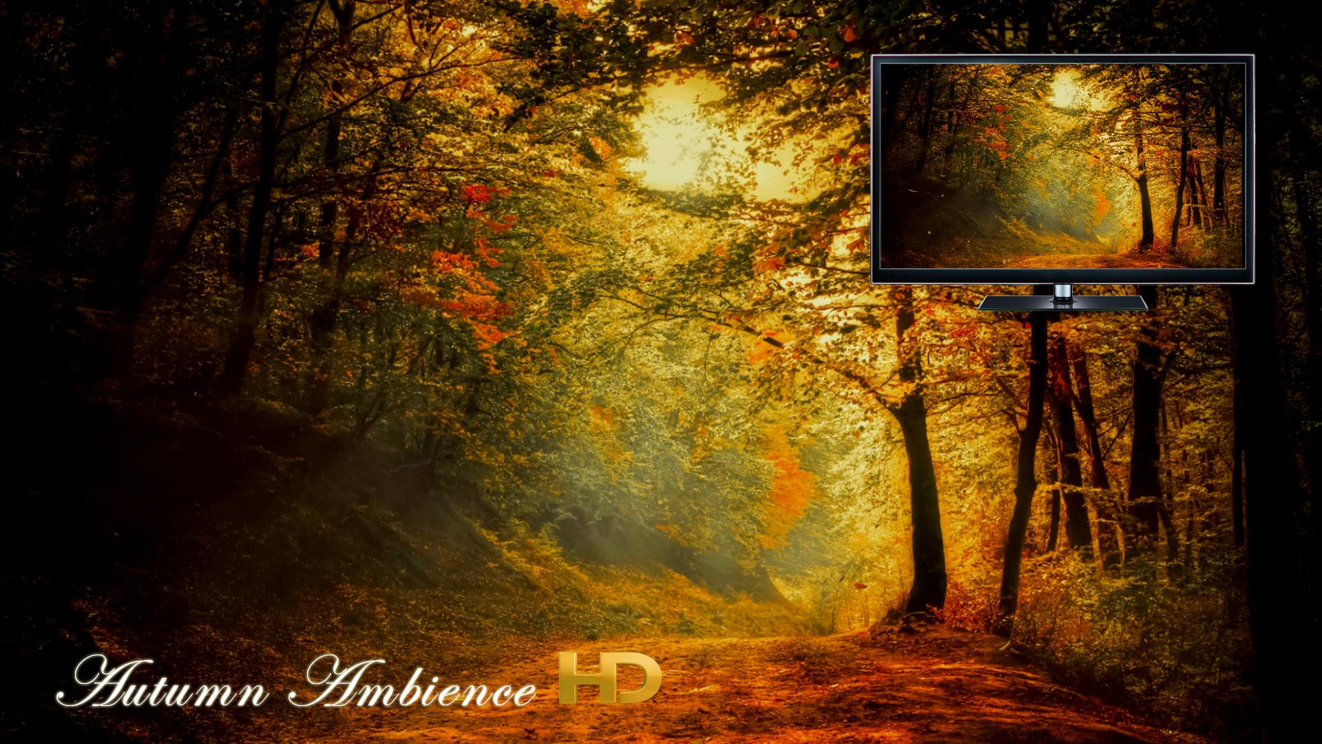 Autumn Ambience HD screenshot 9