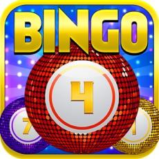 Activities of Bingo Bash For Free Pro