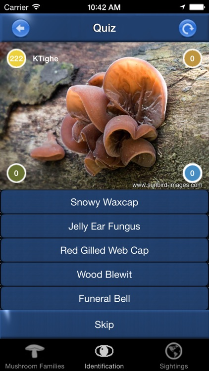Mushroom Id North America - Fungi Identification Guide to Toadstools and Mushrooms screenshot-3
